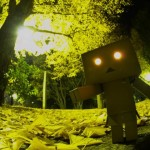 danbo_in_forest