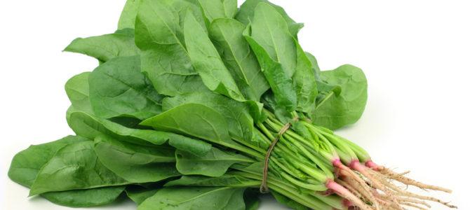 Zeleno lisnato povrće kao hrana i lijek