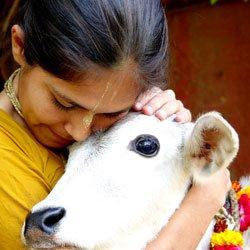 Vegetarijanstvo i religija