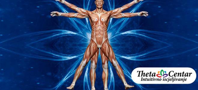 Predavanje o Intuitivnoj anatomiji