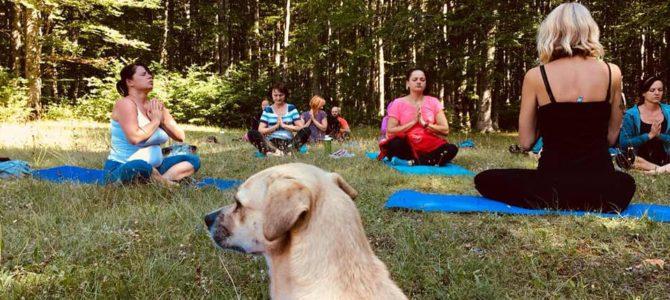 Vikend yoga retreat u Fužinama