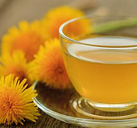 Korijen maslačka za zdravlje jetre i snažan imunitet