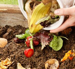 Vodič kroz kompostiranje kod kuće